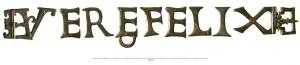 ACG-4019 - Belt appliqué : VTERE FELIX&#013&#013 *  Applies belt several elements drawing registration VTERE FELIX .  The last letter ( X ) is attached to a perforated plate shaped pelte .